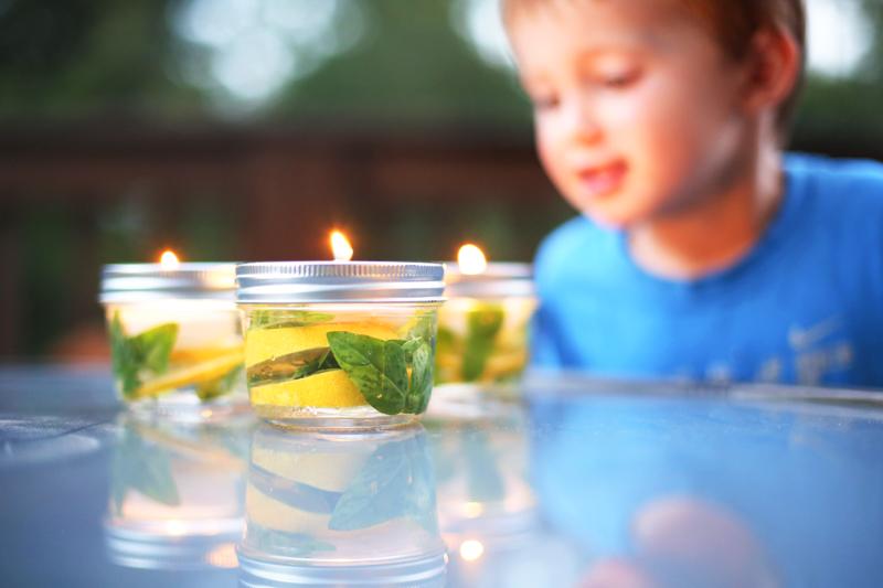 basil lemon insect jar - Bower Power-6
