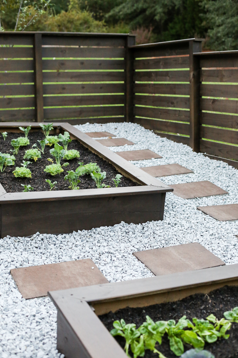 Staining Concrete Pavers Garden Update - Bower Power-44