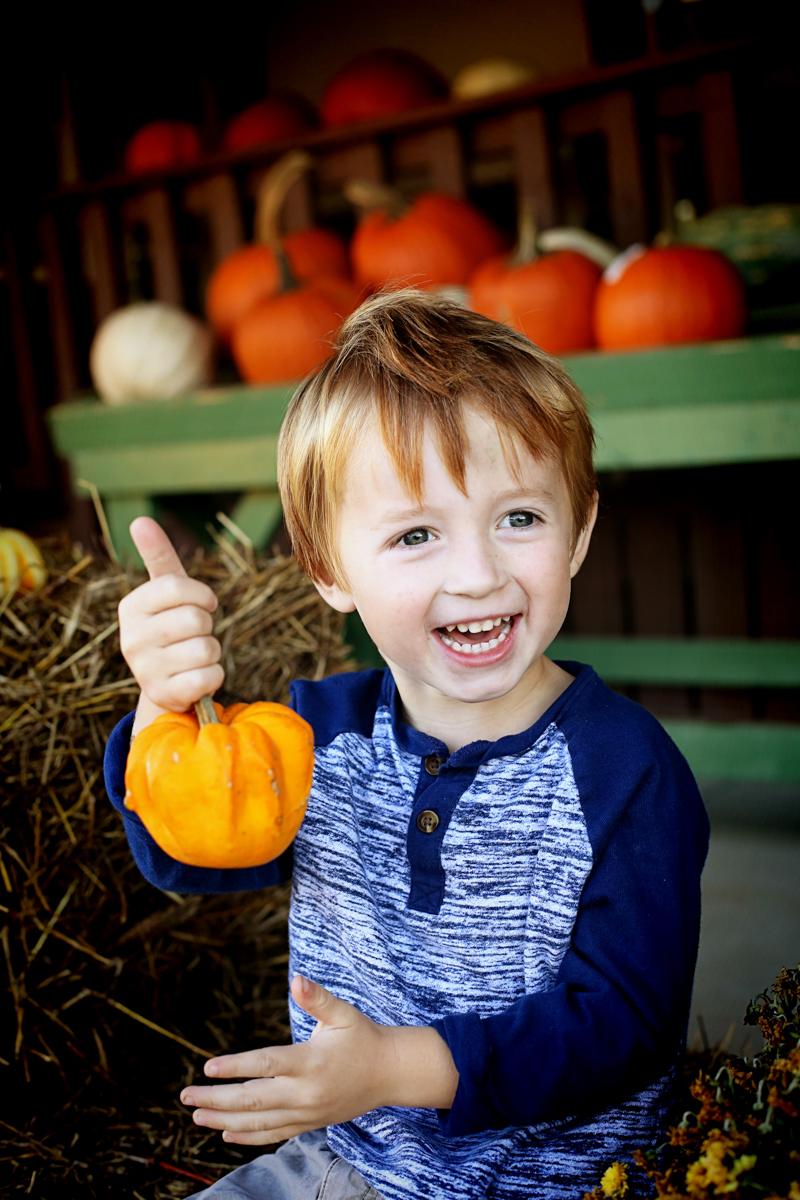 Family Fall Photos Pumpkins - Bower Power-7